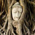 仏教用語でこれは常識8選【仏教用語一覧】