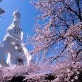 PL教団のPLタワーは一見の価値あり【宗教建築の見どころ】